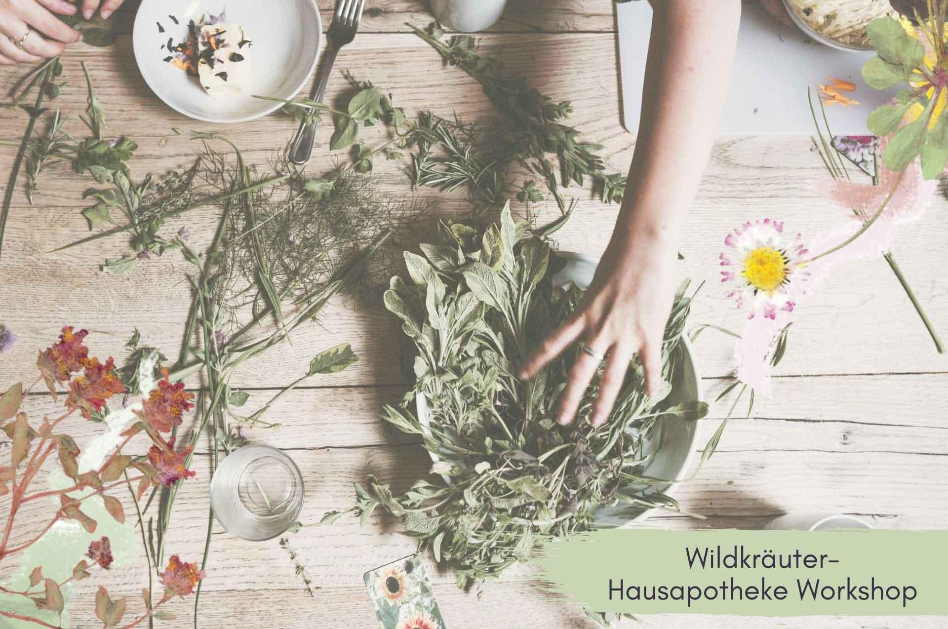 Wildkräuter Hausapotheke DIY