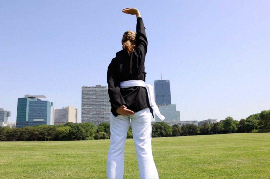 Shaolin Qi-Gong Basiskurs 1-4